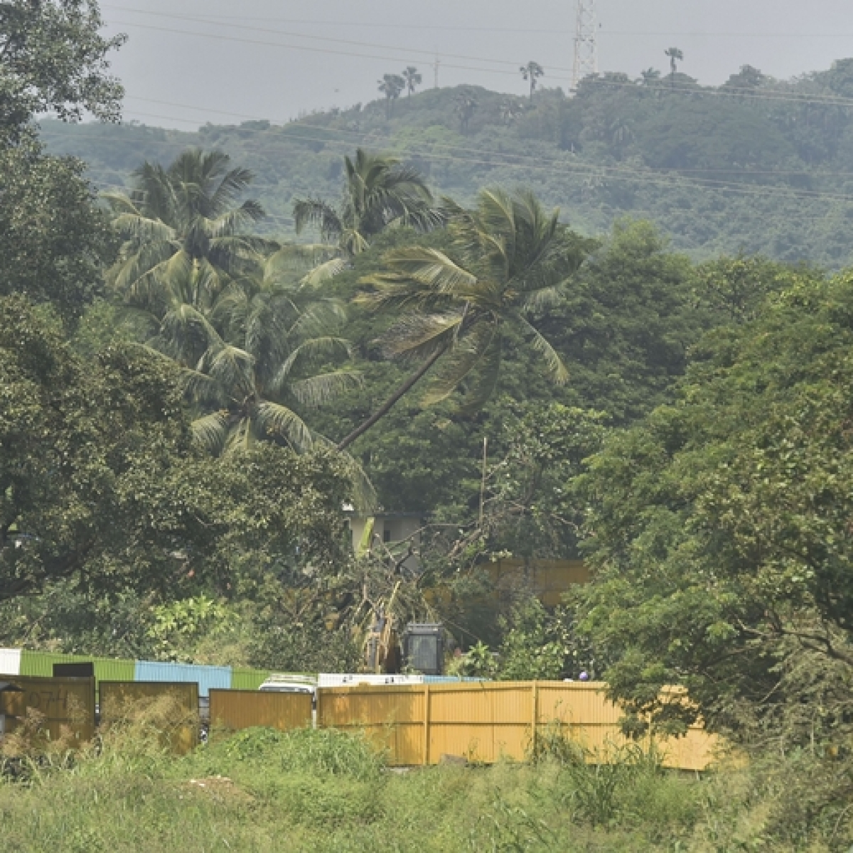 407 acres of land in Aarey Colony can now be used for infrastructure and building construction projects: Report