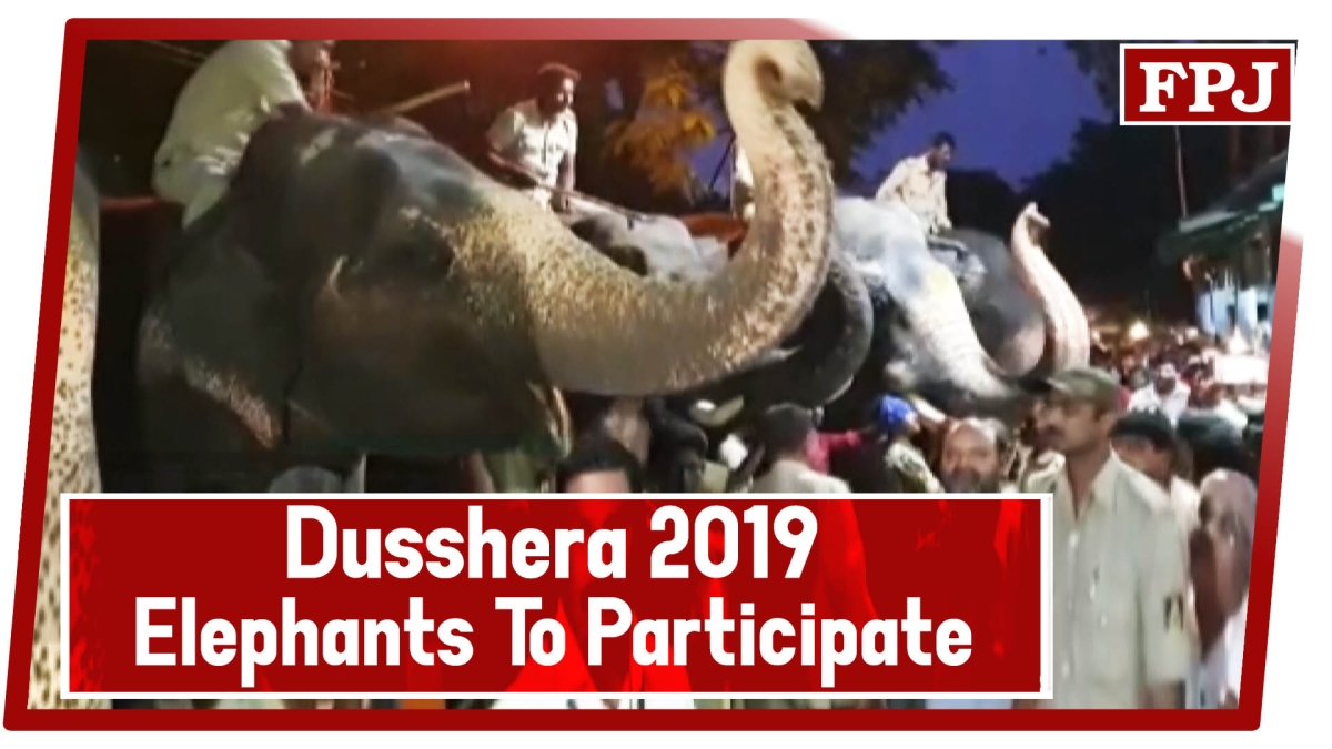 Dusshera 2019: Elephants To Participate In 'Jamboo Savari' Take Blessings At Dargah In Mysuru