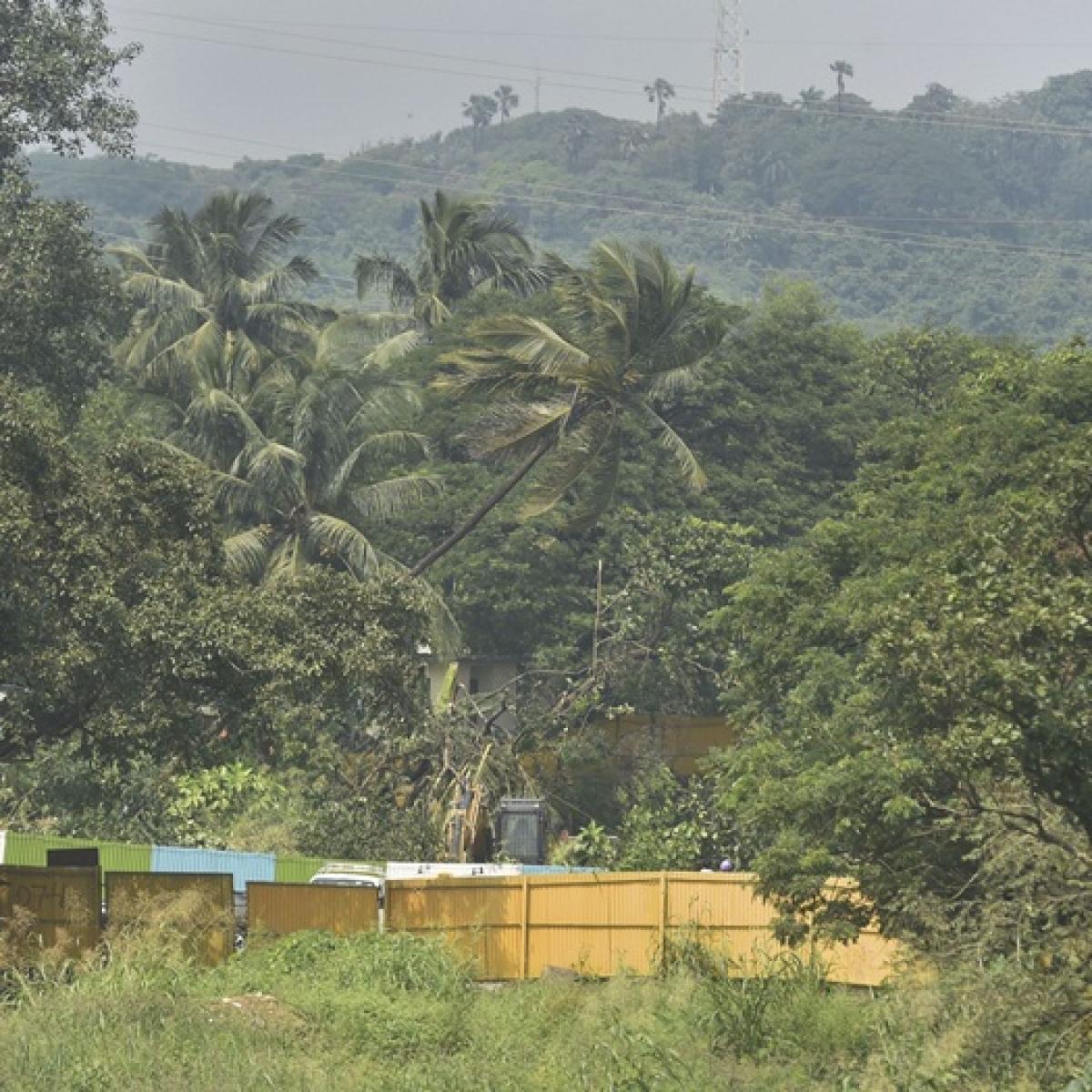 'Trees needed to be cut has been cut': Is SC order on Aarey tree felling redundant?