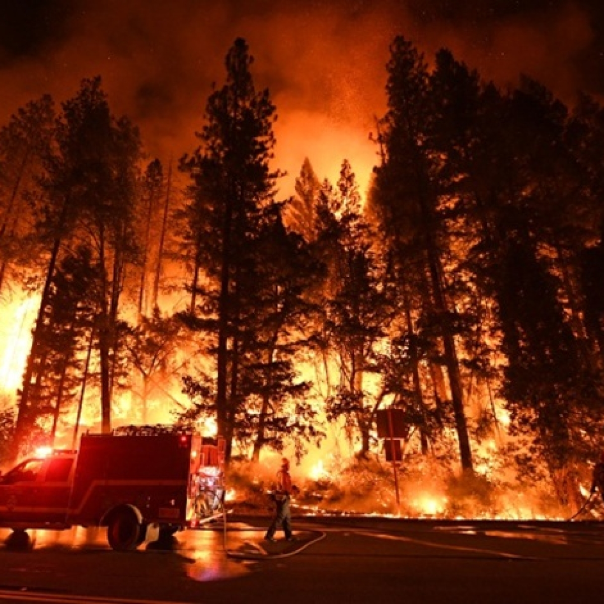 More than 50,000 evacuated due to wild fire in California