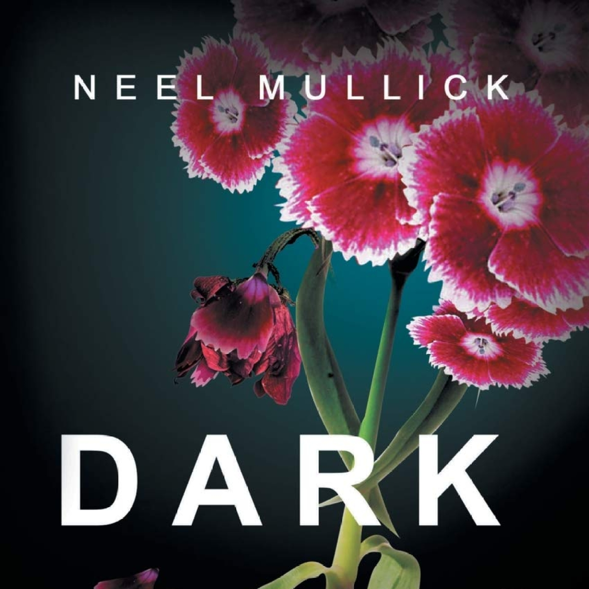 Book Review: Dark Blossom - probing the human mind and relationships