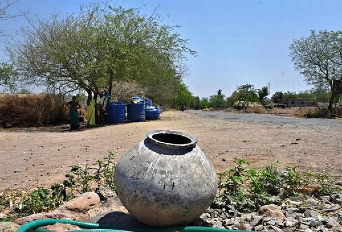 Water-deficient Marathwada needs crop pattern change: Expert