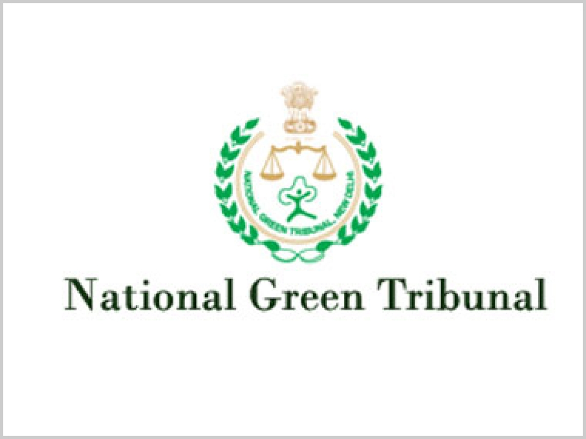 Bhopal: NGT orders closure of slaughterhouse at Jinsi Square