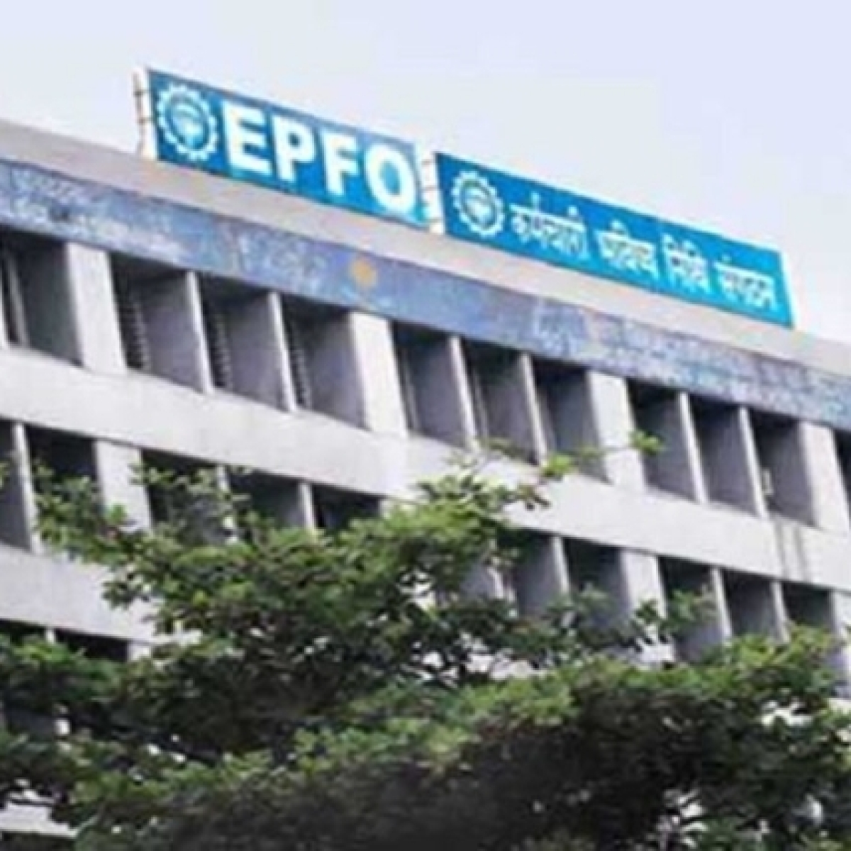 EPFO sets up a mechanism to credit govt's contribution towards EPF, EPS under PMGKY