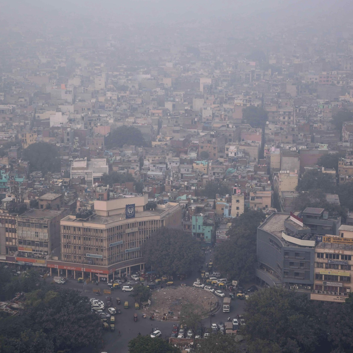 41% Delhiites suffer from metal toxicity; can lead to organ damage, serious health issues