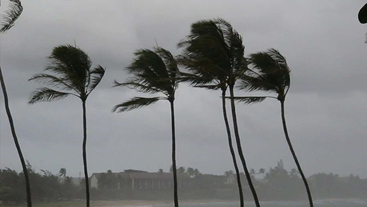 Cyclone Nisarga: Maharashtra govt issues dos and don'ts for dealing with cyclonic storm