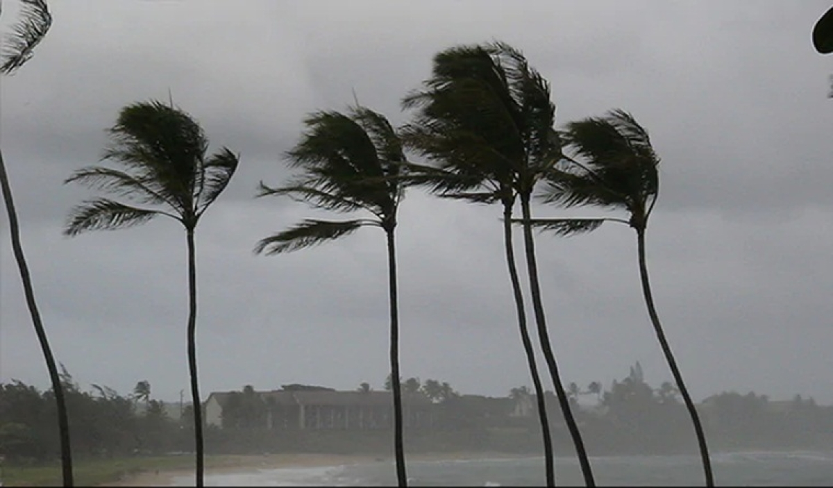 Cyclonic storm Maha very likely to weaken into depression by today, says IMD