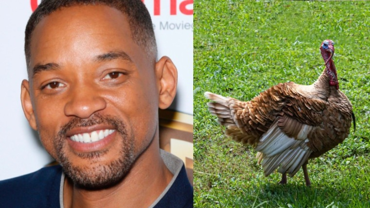 Watch: Will Smith concerned over a Turkey on road during Thanksgiving in this funny video