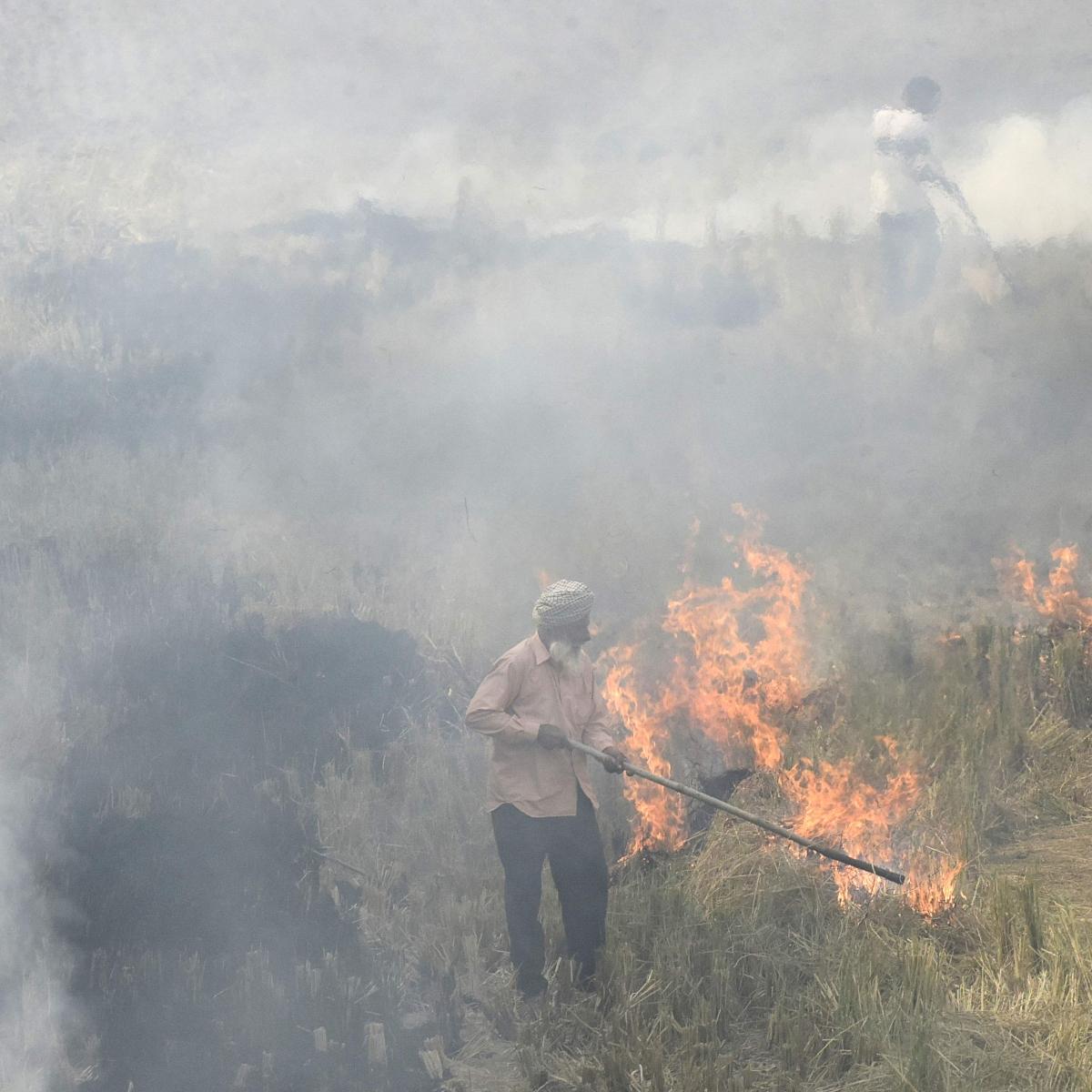 Delhi AQI 'very poor' as stubble burning spikes
