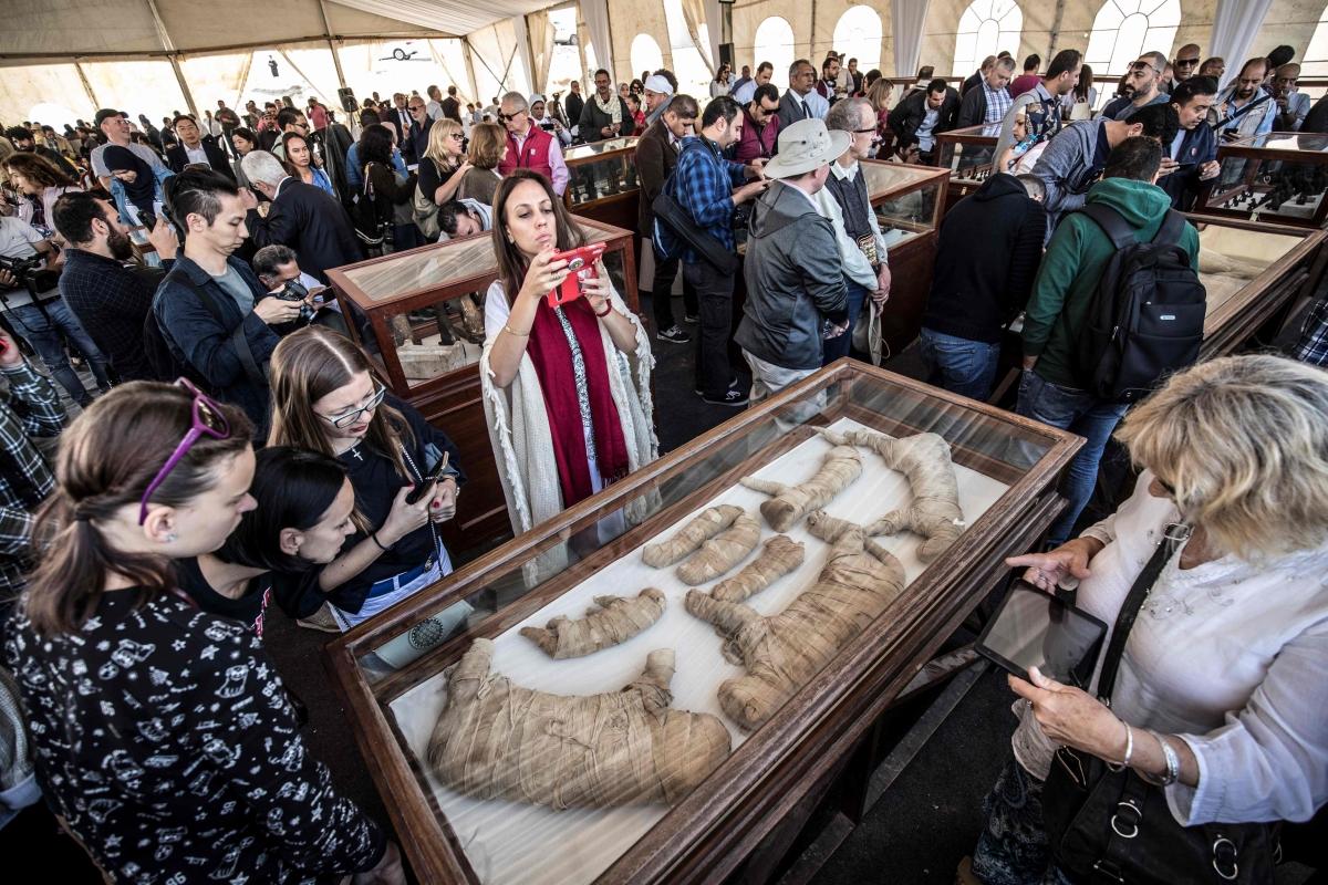 Egypt unveils mummies of lion cubs, crocodiles, birds