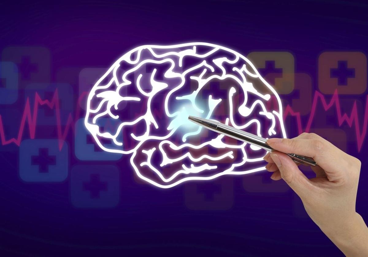 Brain patterns predict memory loss in advance