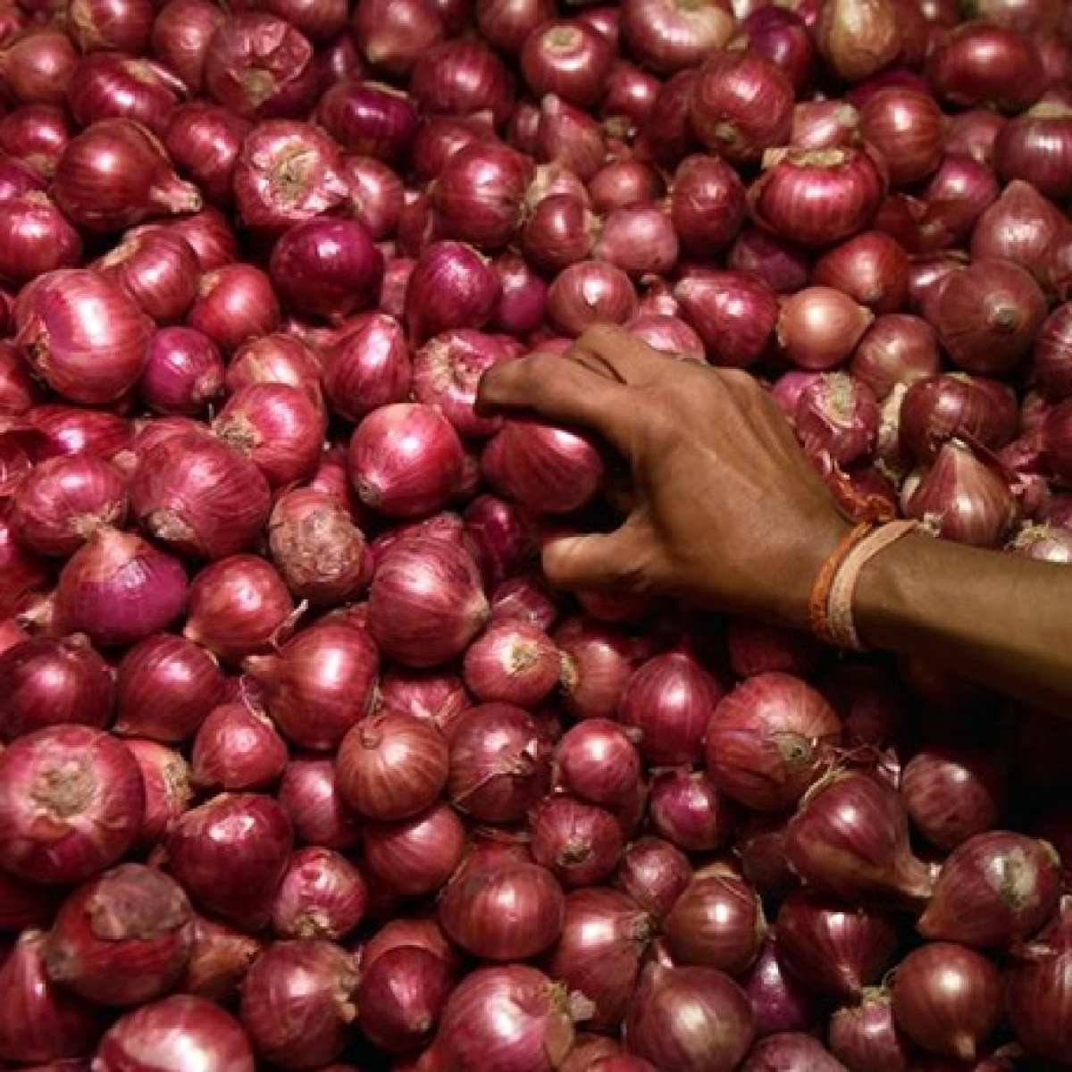 Onion prices remain high across major cities; Avg rate Rs 100/kg, highest Rs 165/kg at Panaji