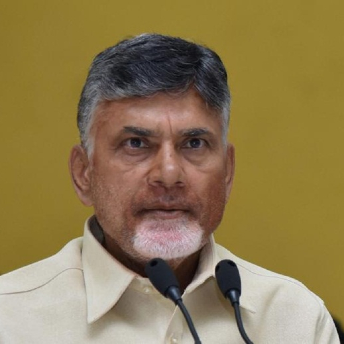 Andhra Pradesh: FIR lodged against Chandrababu Naidu for creating fear over N440K strain of COVID-19
