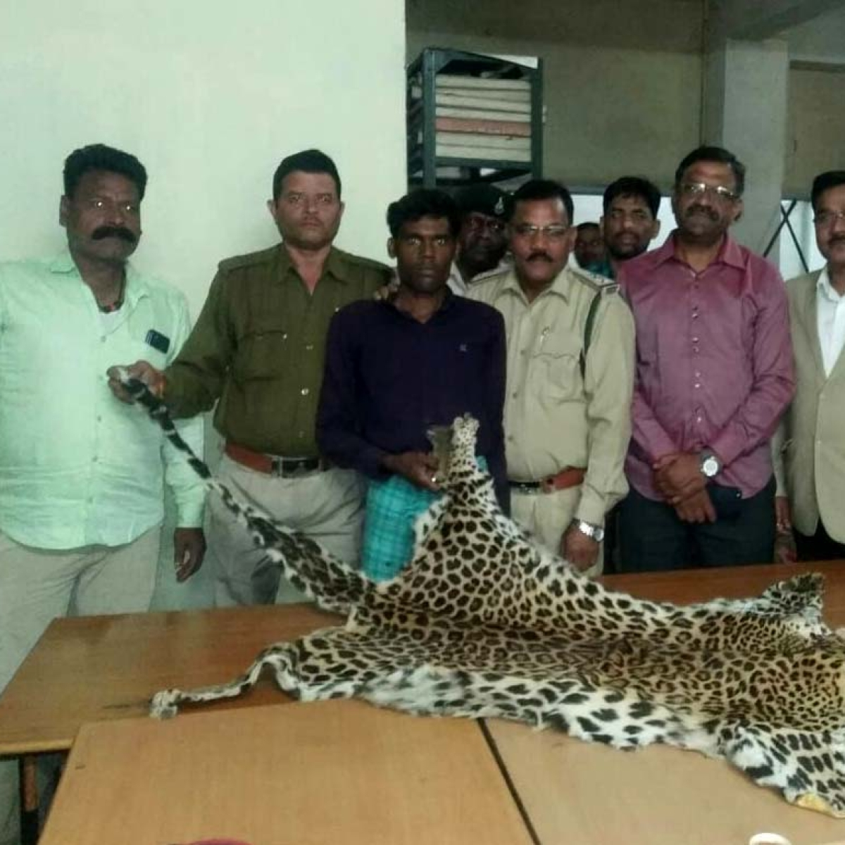 Bhopal: Man held with Leopard skin