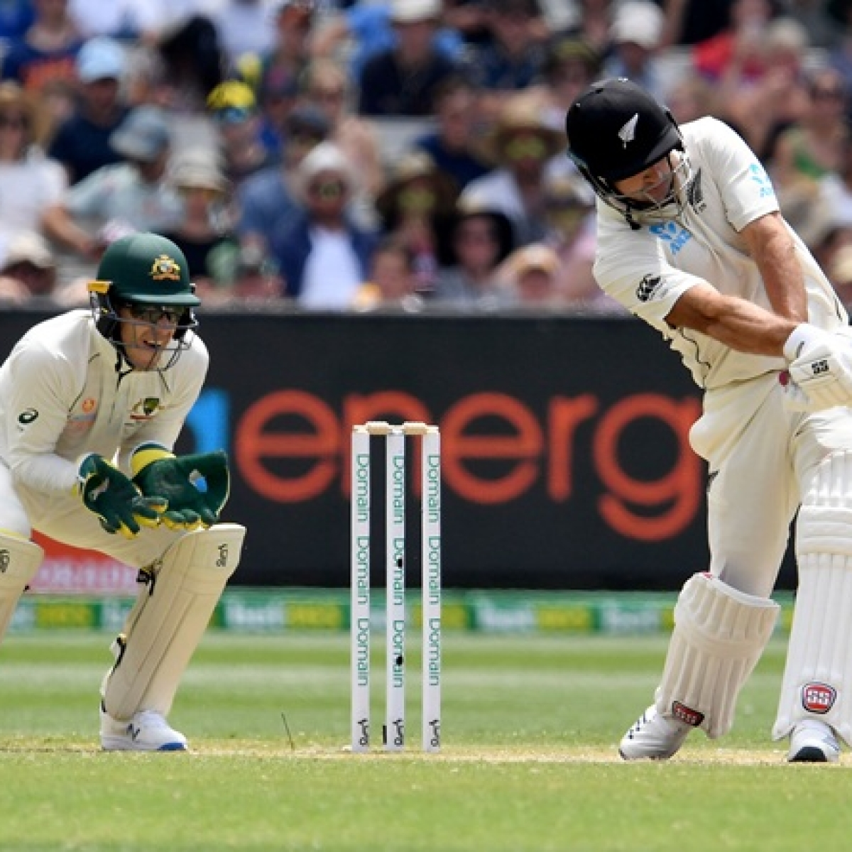 'He knows the bloke in the truck': Tim Paine's hilarious dig at Ross Taylor over LBW review