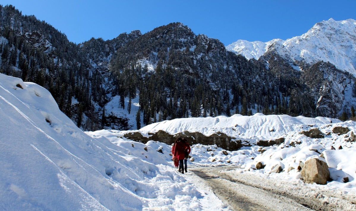 Intense cold wave continues in Himachal Pradesh