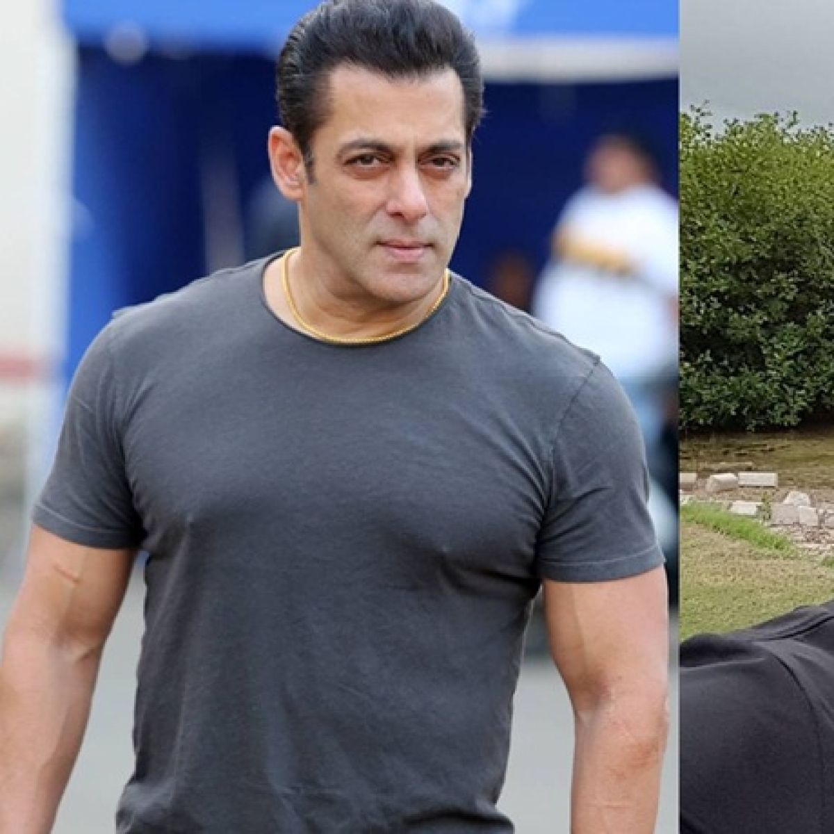 Salman Khan finds MS Dhoni as the most 'Dabangg player' in cricket