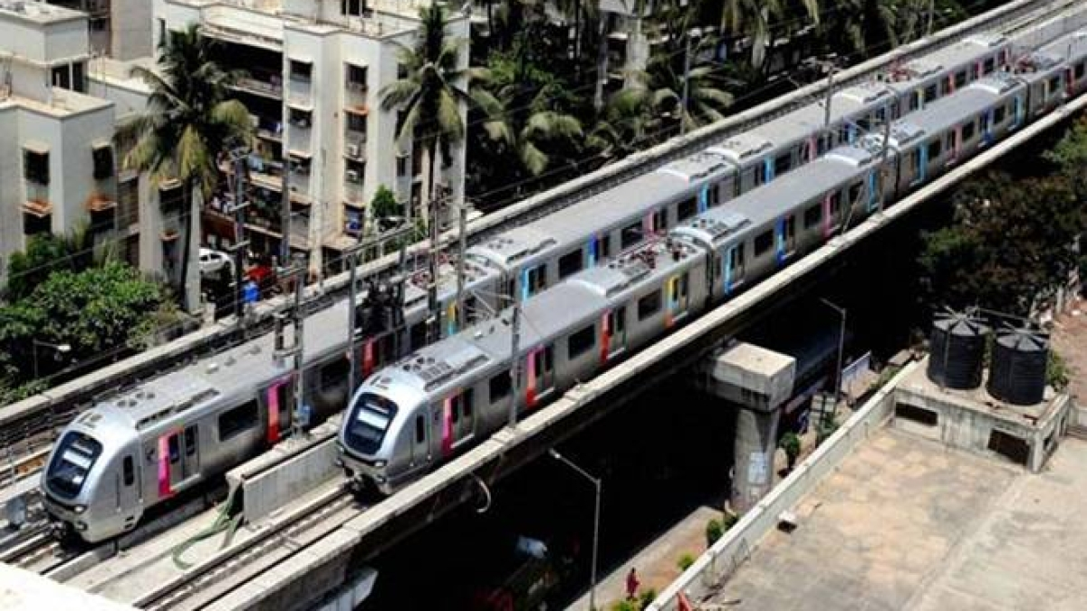 Metro vs Greenery: HC committee 'disturbed' over low survival rate of transplanted trees