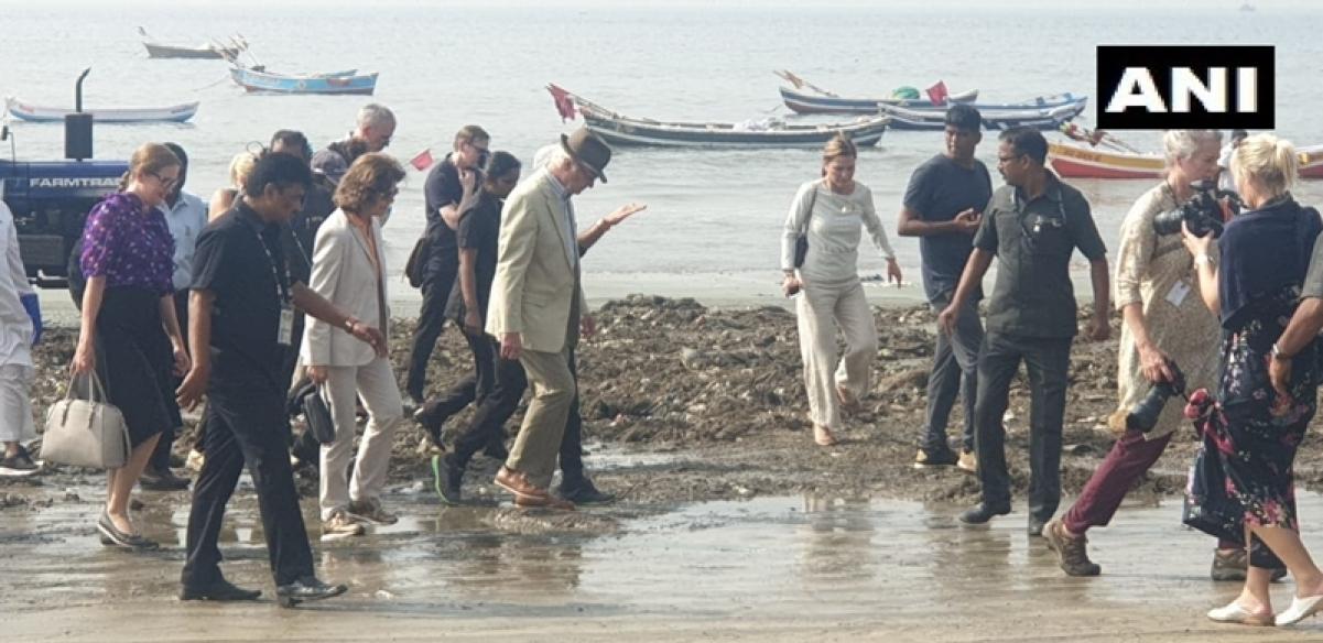 Swedish royal couple clean up Mumbai's Versova beach with climate activist Afroz Shah
