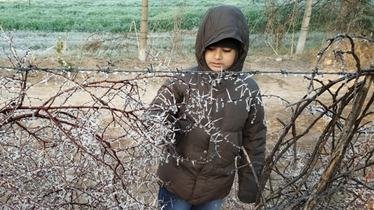 Rajasthan reels under cold wave, records below zero degree temperatures