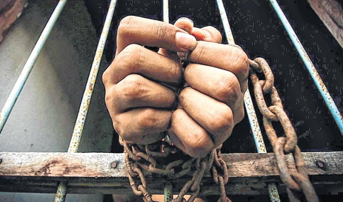 Telangana: Police bust red sandalwood smuggling racket, 2 arrested, 137 kg logs seized