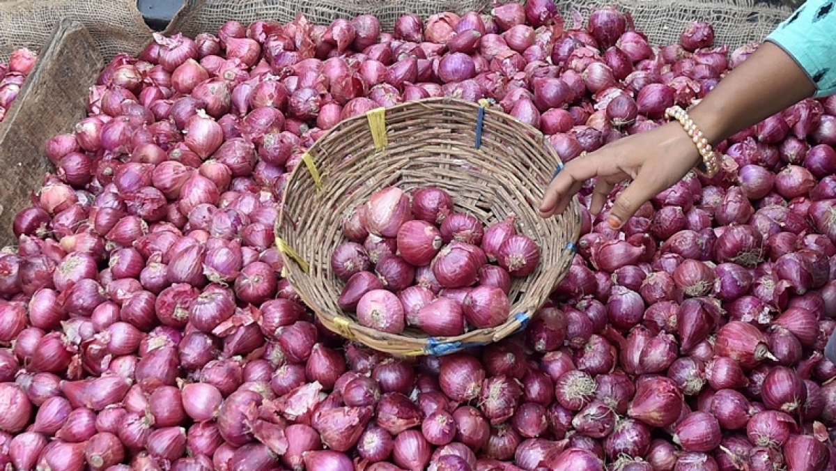 Onion prices hold the key to the next RBI rate cut