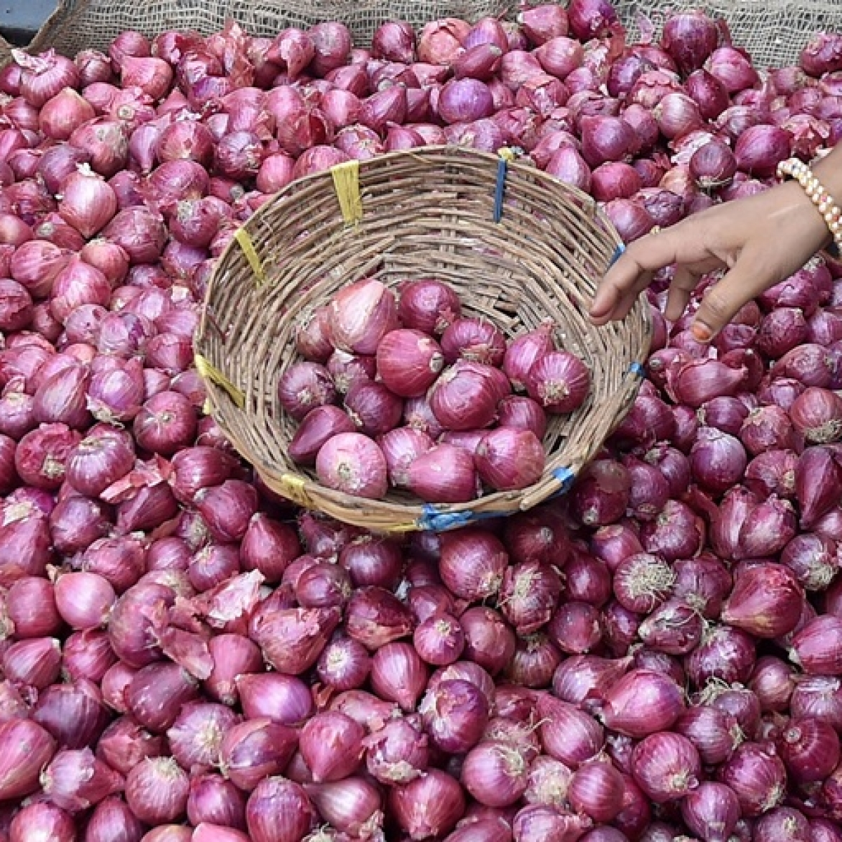 'The Onionomics of India'- why onion prices have skyrocketed