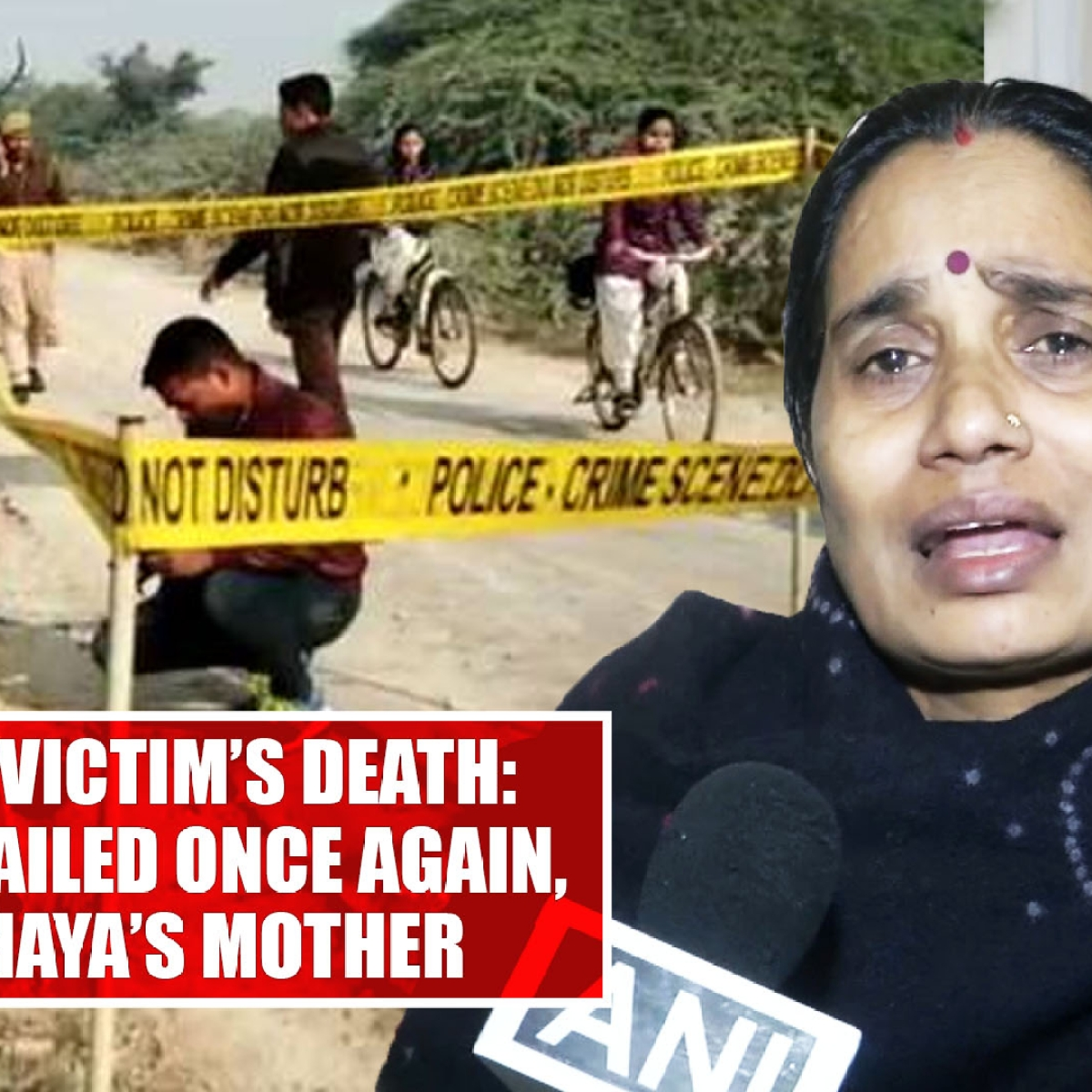 Unnao rape victim's death: Our system failed once again, says Nirbhaya's mother