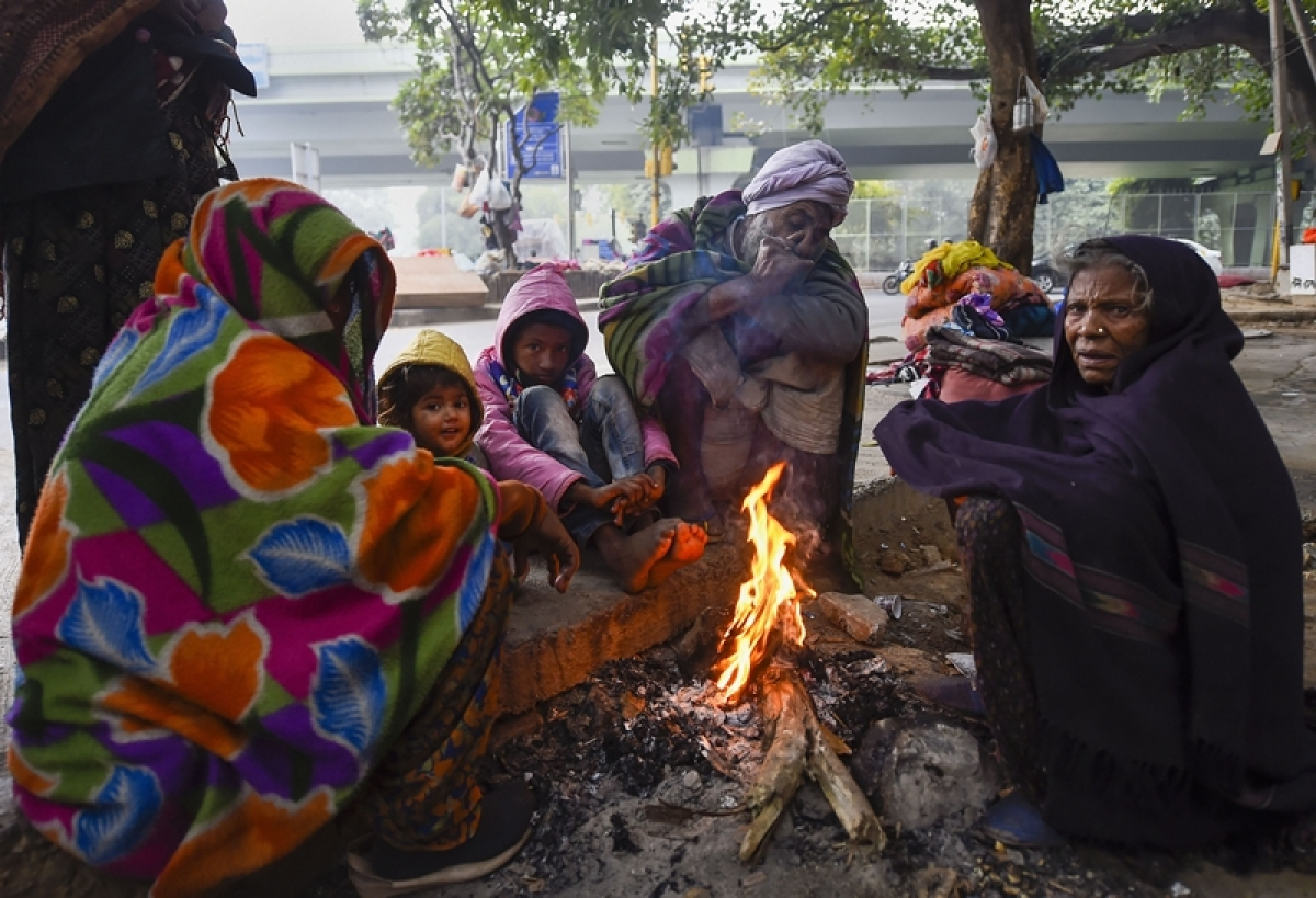 Haryana & Punjab in grip of freezing cold, Hisar reels at 0.3 degrees Celsius