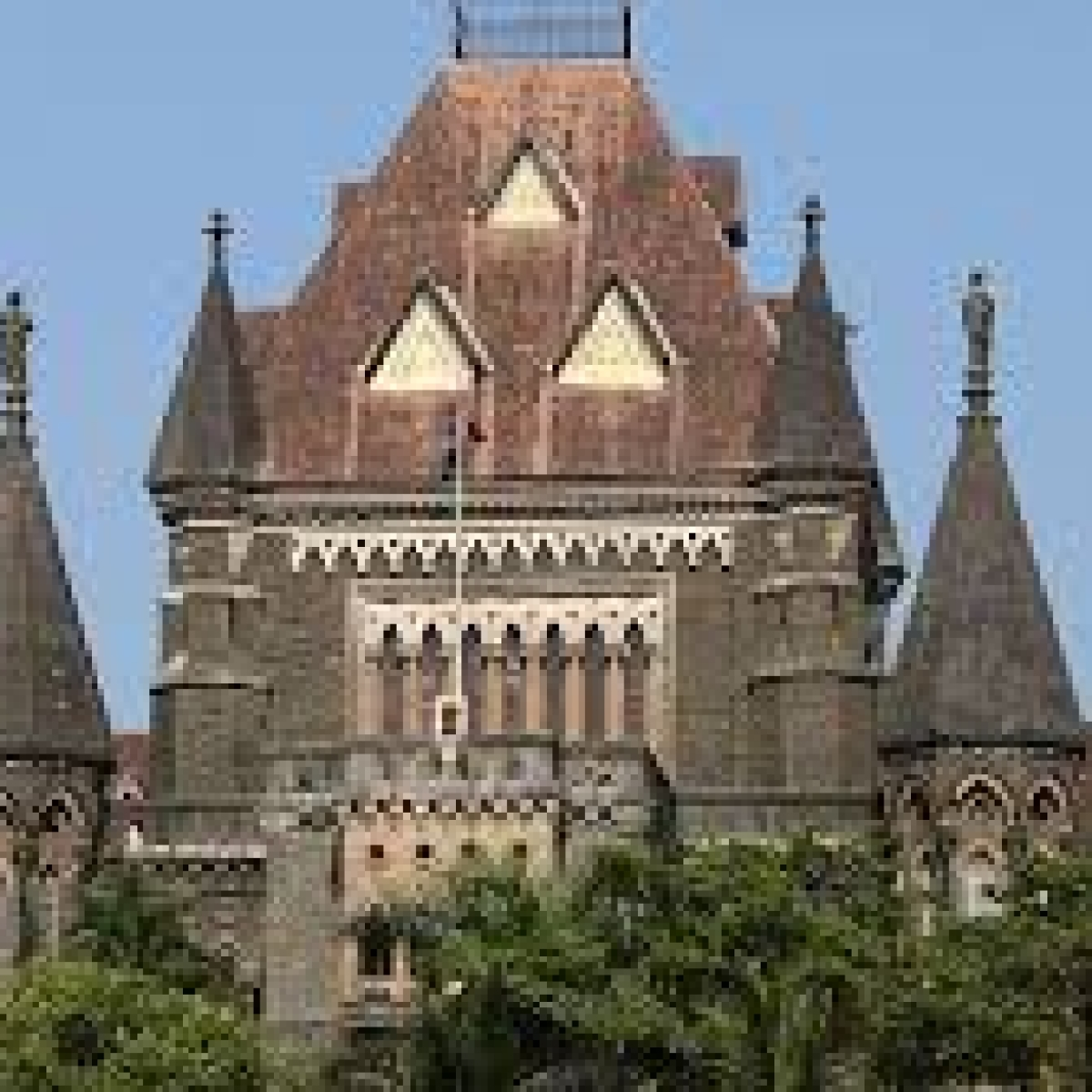 Get used to lawyering by video conference, says Bombay HC judge