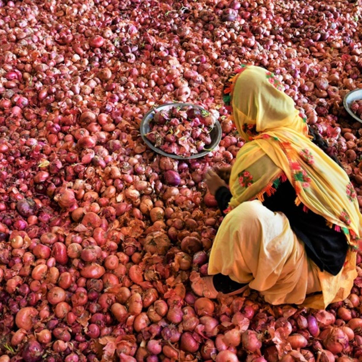 Pune: Two held for stealing 550 kg onions in Devjali village