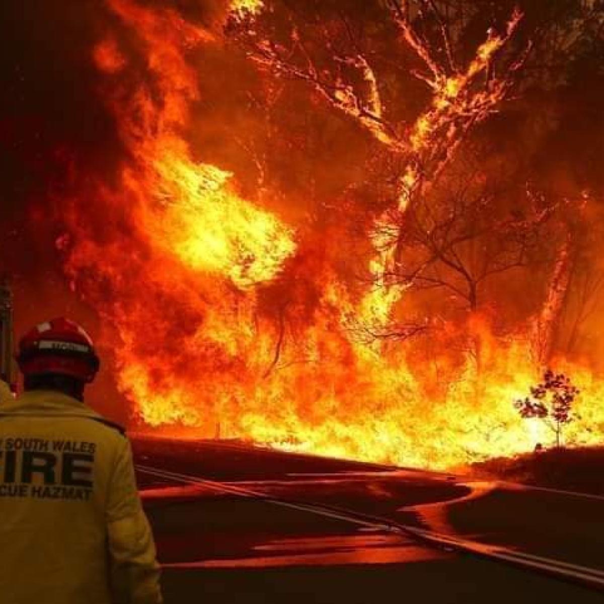 Rain brings relief to Australian bushfires