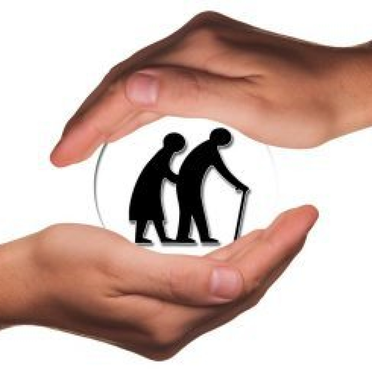 Senior citizens are an important part of our lives, use their experience, says Bombay HC