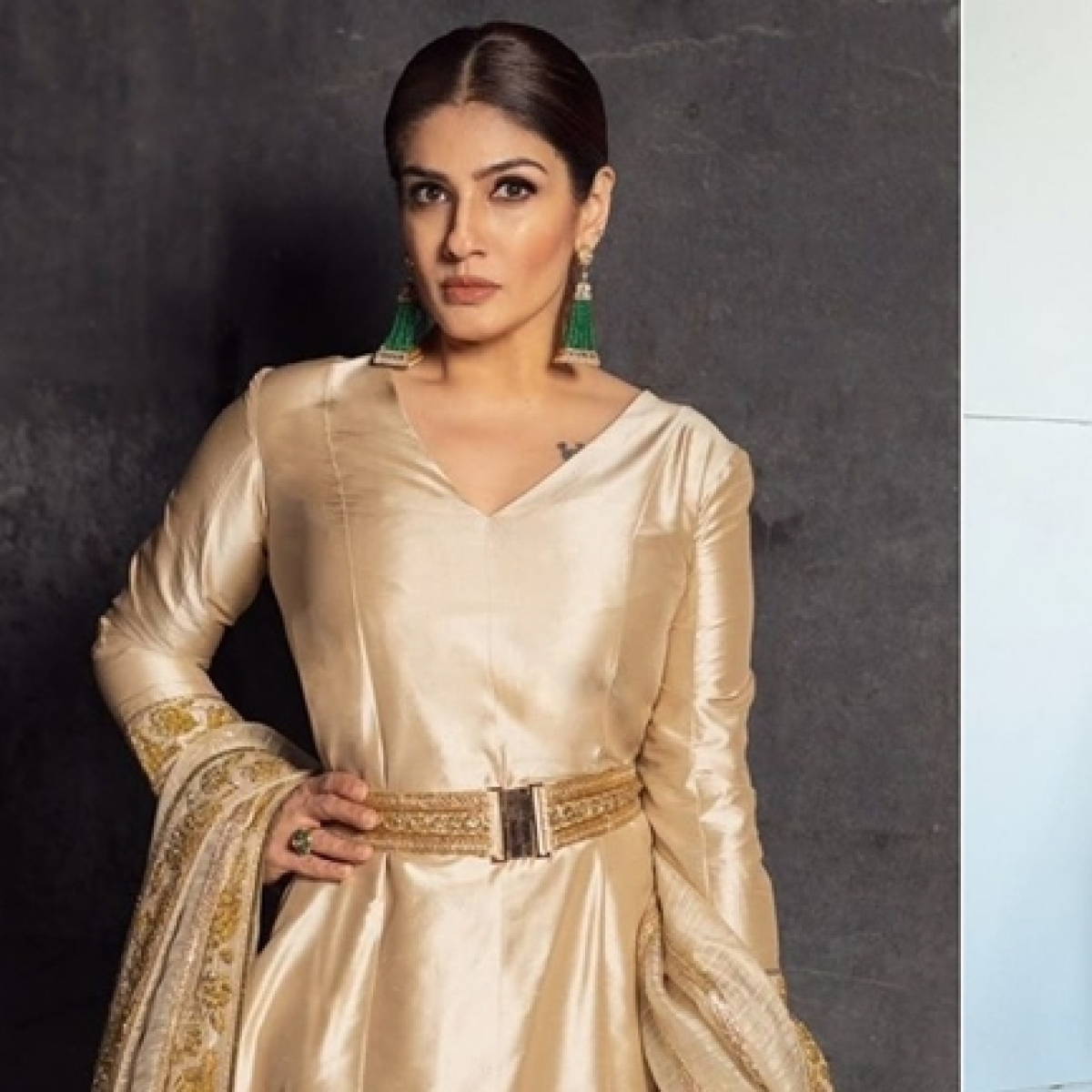Raveena Tandon, Taapsee Pannu and other B-town celebs greet nation with Republic day wishes
