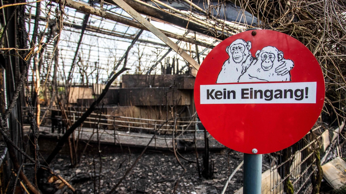 """A sign reading """"No Entrance!"""" is seen at the burned-out monkey house of the zoo in Krefeld, western Germany, on January 1, 2020."""