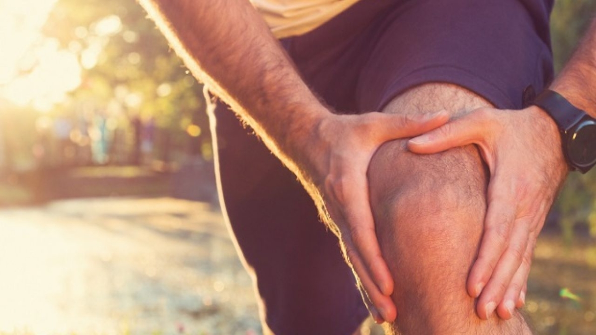 Knee injury affects brain and hinders recovery