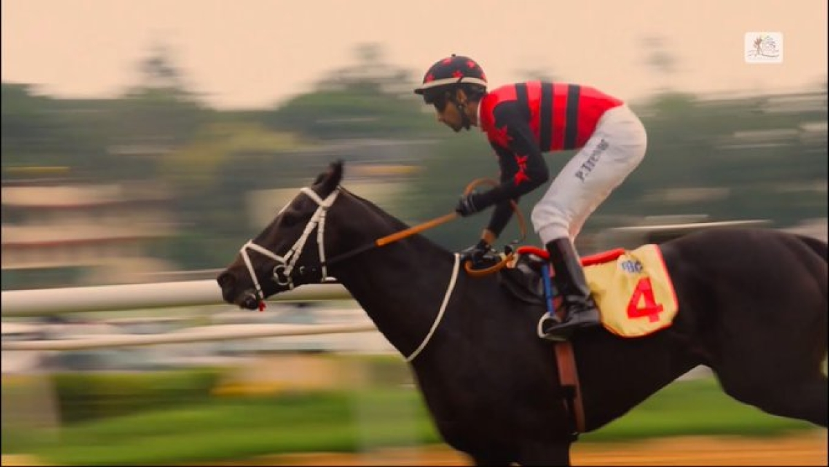Indian Derby: War Hammer is the new Titan
