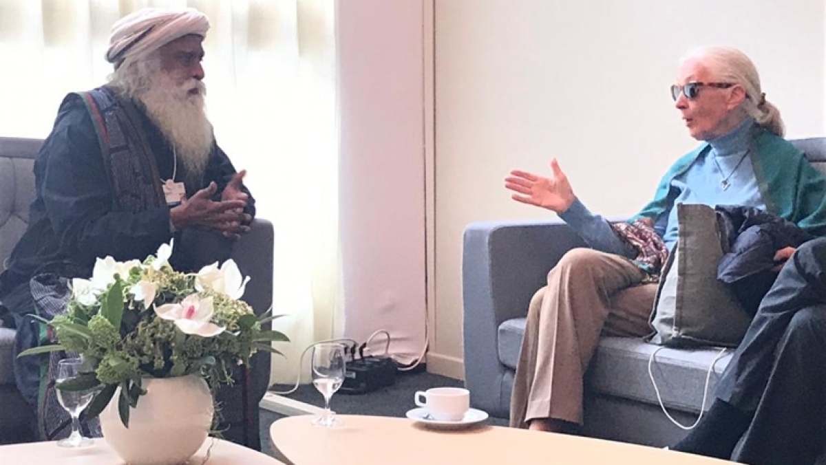 'She said my beard is too luxuriant for a chimp': Sadhguru shares a light moment with Jane Goodall at World Economic Forum