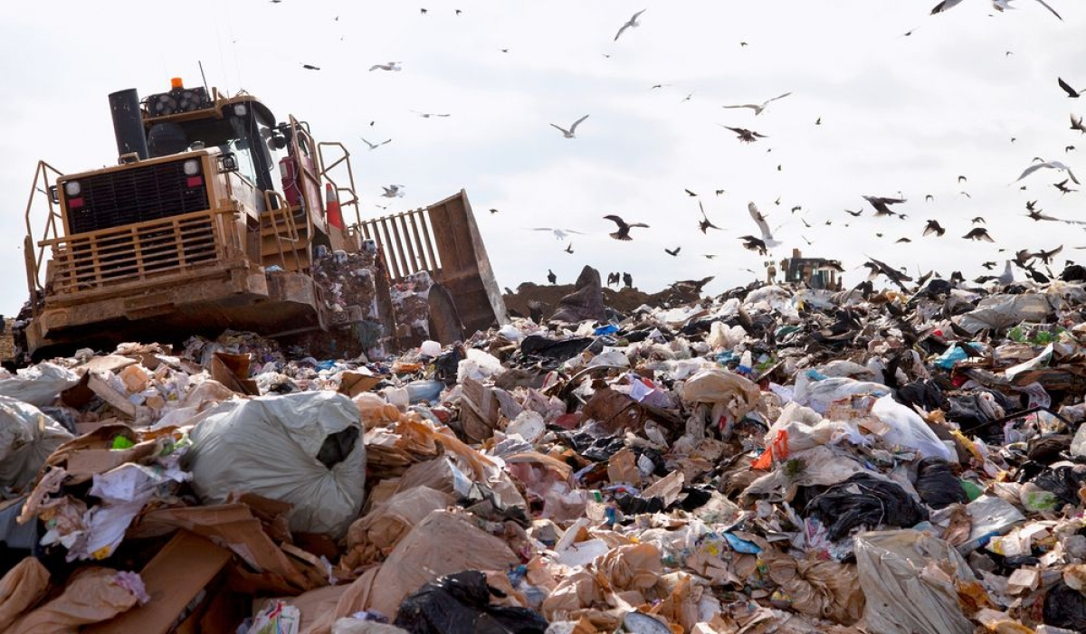 Thane: KDMC registers case against three citizens for dumping waste in open space