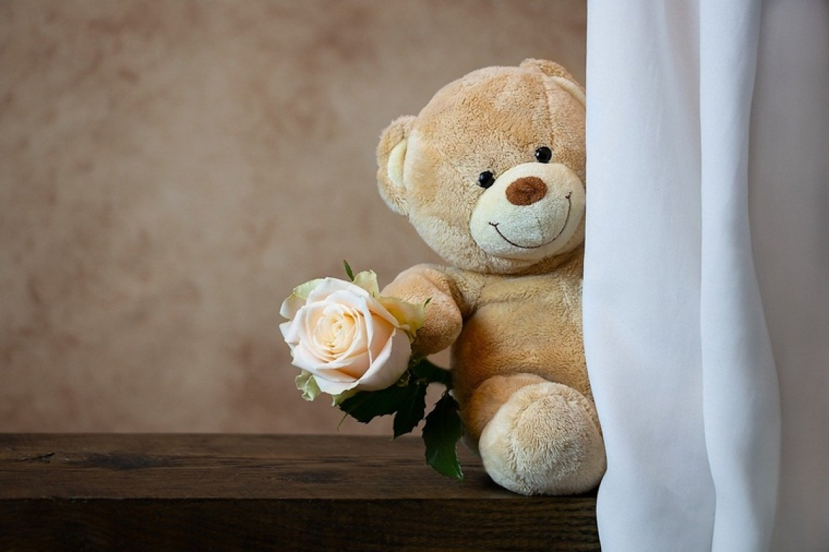 Teddy Day 2020: Messages, quotes, GIFs to send over WhatsApp or SMS