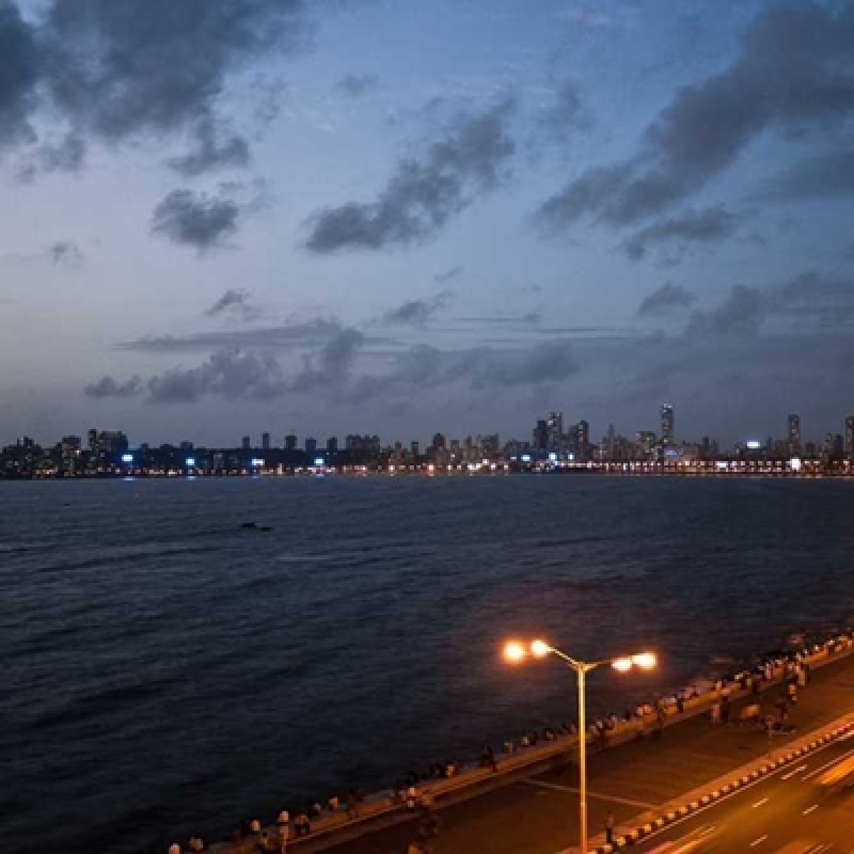 Maha govt mulls geo-tagging locations in the sea to help protected species