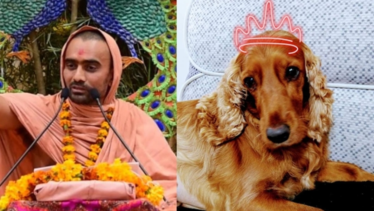 'I cooked for my husband while menstruating': Twitter finds the cutest dogs to shut down Swami's misogyny