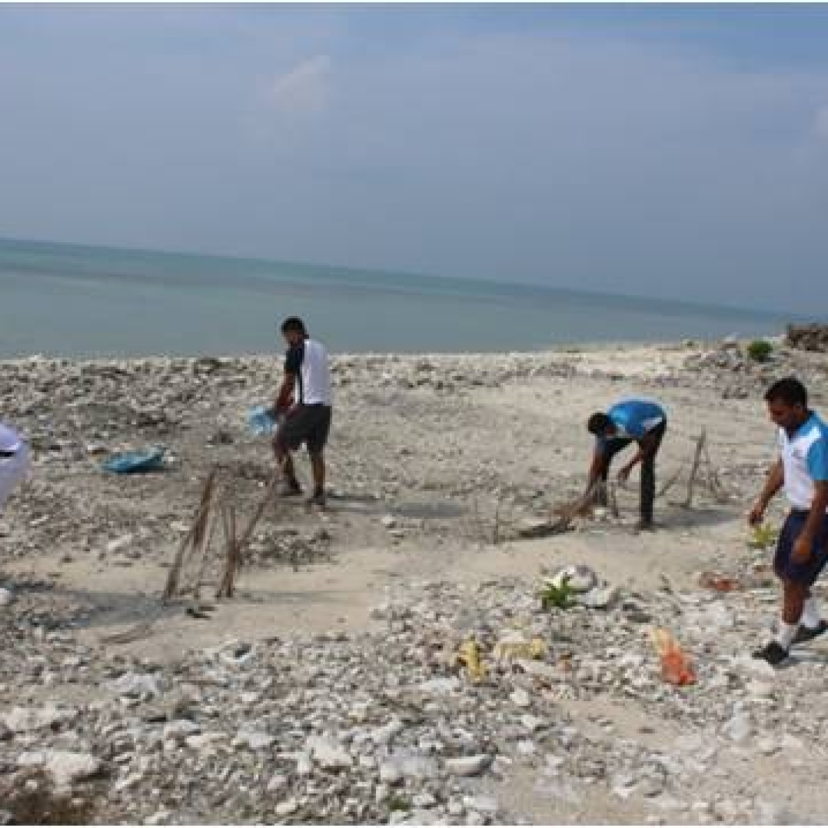 Beach clean-up tops list of civic department