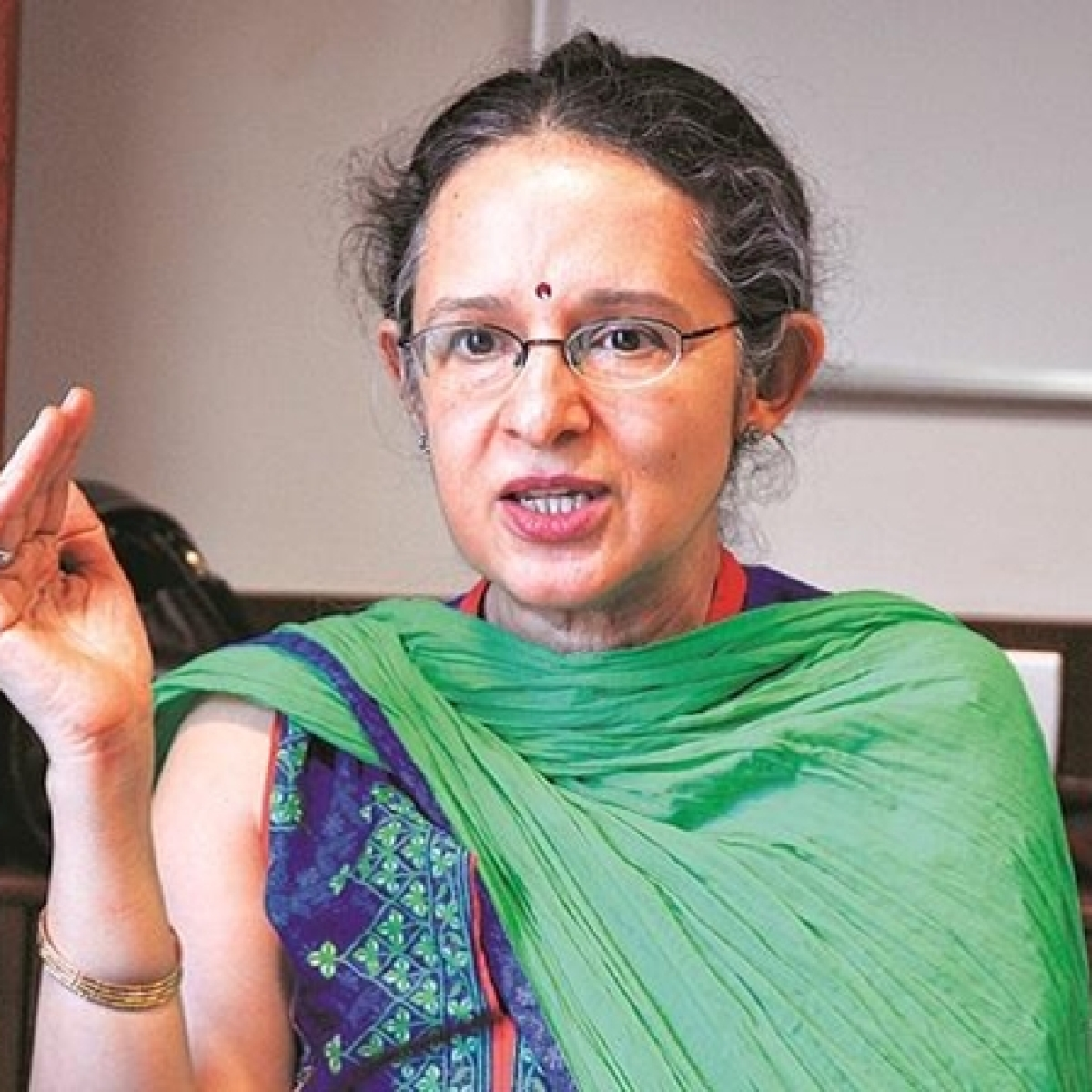 Budget lacked vision, admits PM's economic aide Ashima Goyal