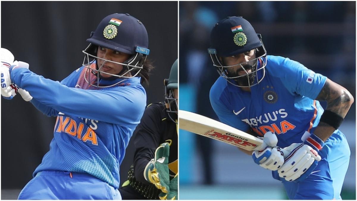 'Virat Kohli of women's cricket': Scott Styris compares Smriti Mandhana to Indian men's captain