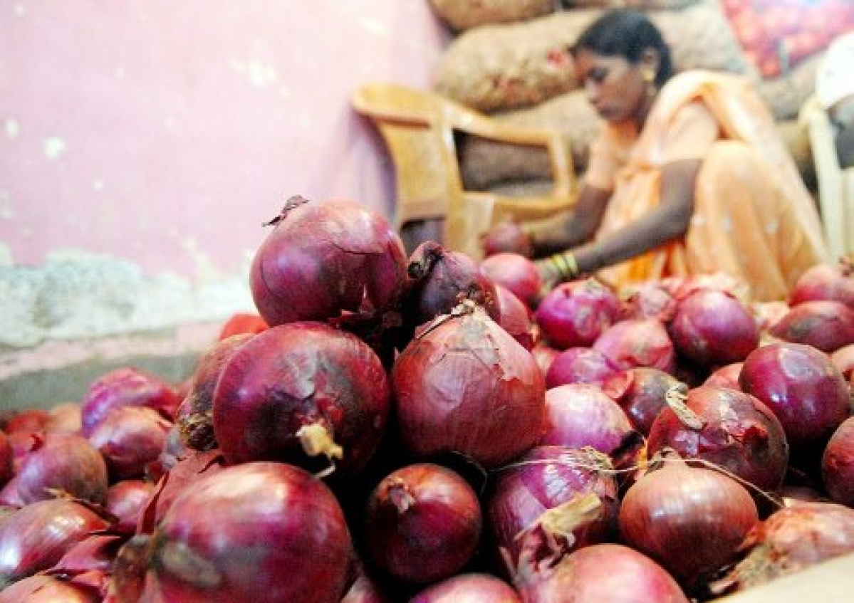About 90% imported onion rots at ports as states not keen on buying