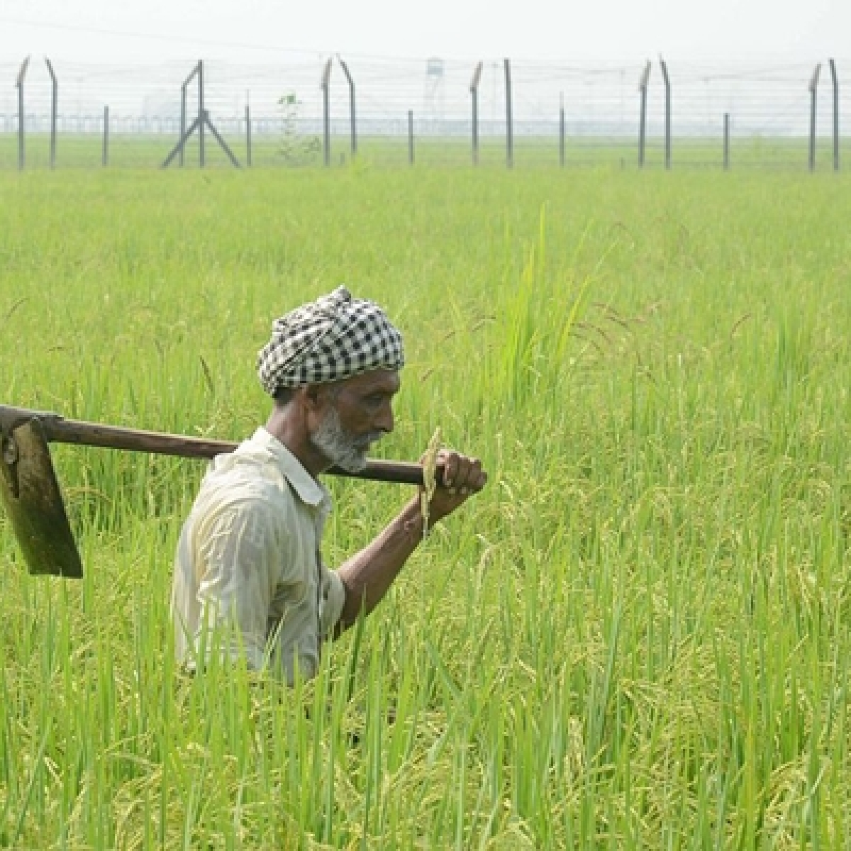 Modi government seeks to give boost to rural India, cabinet clears key decisions to benefit farmers, transform agriculture