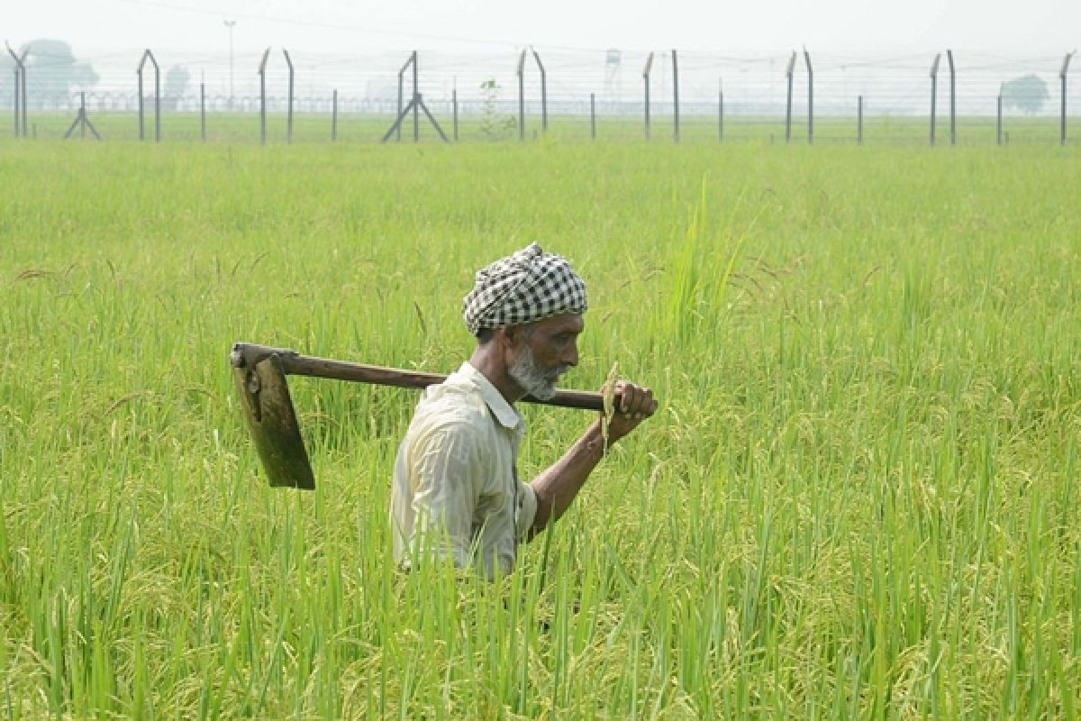 Maharashtra: 1st list of crop loan beneficiaries to release today