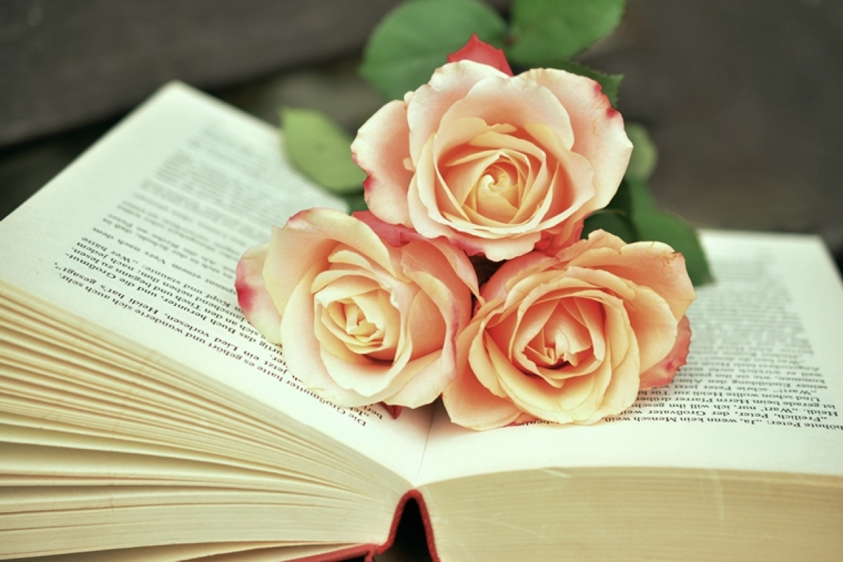 Rose Day 2020: Did you know red rose was originally NOT a symbol of LOVE?