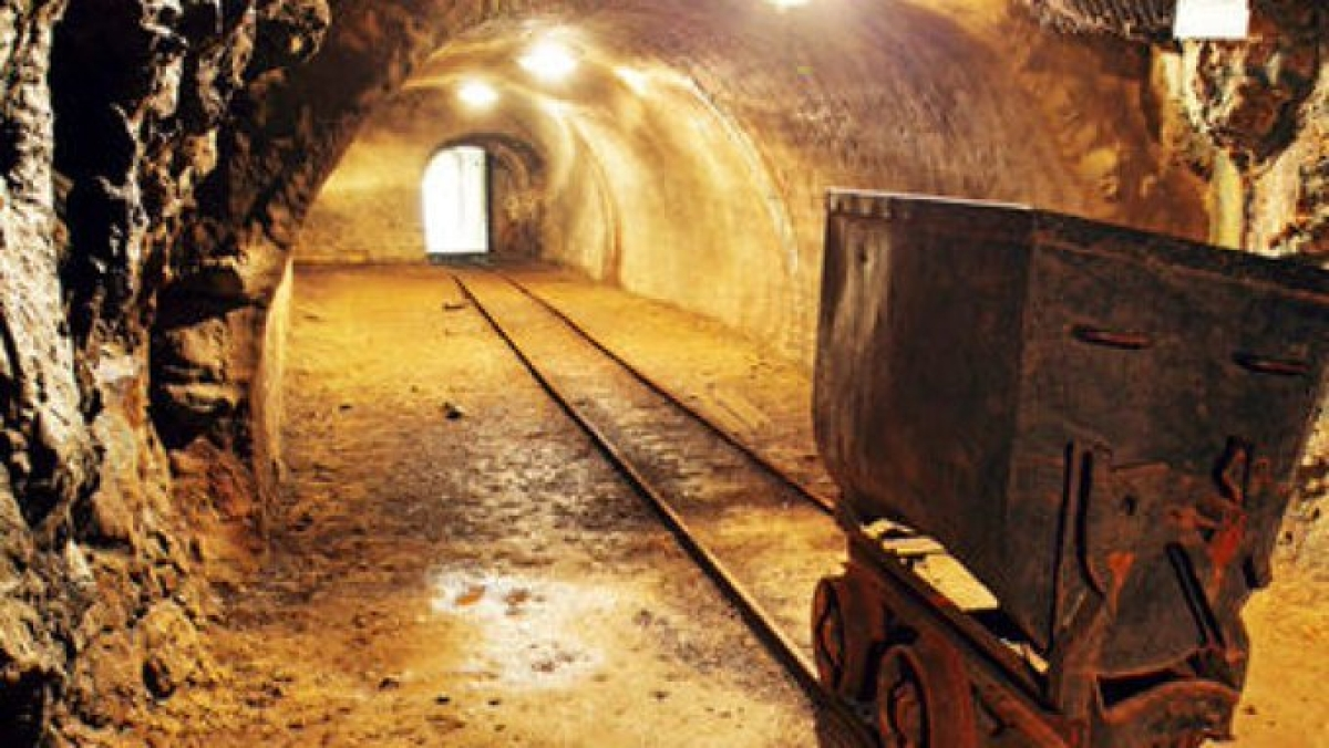 Snakes pose threat in Sonbhadhra goldmine